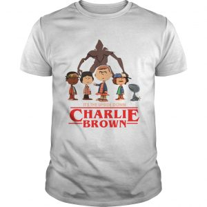 Its the upside down Charlie Brown Stranger Things  Unisex