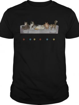 Cats Friends Awesome TShirt