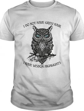 I do not have grey hair I have wisdom highlights Owl shirt