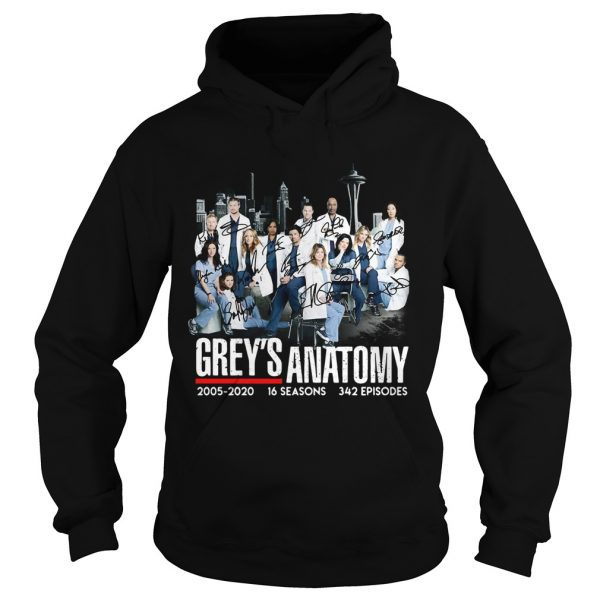 Greys Anatomy 2005 16 seasons 342 episodes signatures  Hoodie