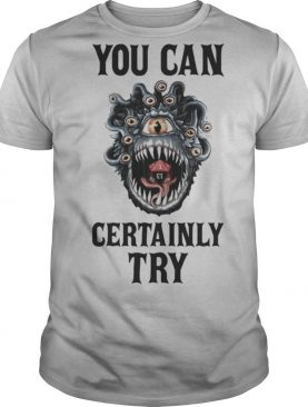 You can certainly try shirt