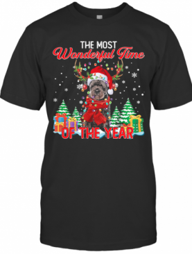 Bouvier Des Flandres Santa The Most Wonderful Time Of The Year Christmas T-Shirt